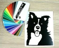 Border Collie Klepie Car Sticker Vinyl Decal Adhesive Wall Window Bumper Black Ebay