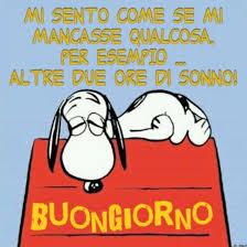 immagini buongiorno spiritose - BuongiornoColSorriso.it