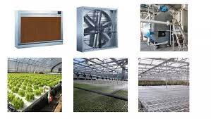 Manufacture Home Depot Roll Roof Double Layer Film Greenuouse For Sale Buy Double Layer Greenhouse Film Greenhouse Film Home Depot Roll Greenhouse Roof Film Product On Alibaba Com