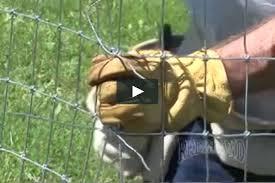 Non Climb Horse Fence Installation How To On Vimeo