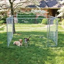 Pet Safe Do It Yourself Dog Kennel 10 Ft W X 10 Ft L X 6 Ft H Tractor Supply Co Dog Kennels For Sale Dog Kennel Outdoor Dog Kennel