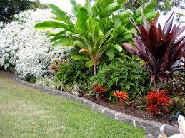 wynnum tropical garden brisbane