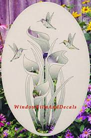 Amazon Com Lily Hummingbirds Oval Etched Window Decal Vinyl Glass Cling 21 X 33 White With Clear Design Elements Home Kitchen