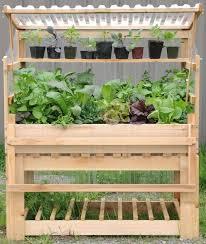 cold frame germination station