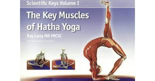 the key muscles of hatha yoga by ray long