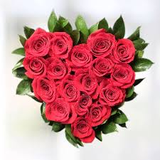 romantic red roses flower delivery