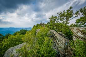 Bearfence Mountain A Great Spring Hike In Shenandoah National Park Virginia