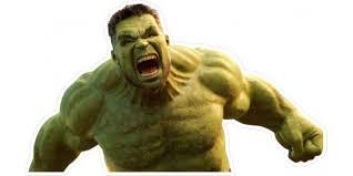 Hulk Decal Sticker 14