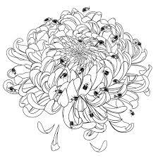 Tổng hợp các bức tranh tô màu hoa cúc ý nghĩa nhất dành tặng cho ...