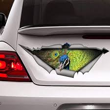 Amazon Com Peacock Car Decal Funny Car Sticker Vinyl Sticker For Cars Windows Walls Fridge Toilet And More 6 Inch Home Kitchen