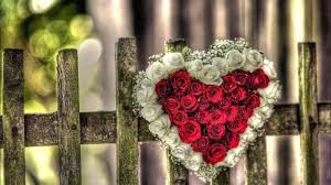 اجمل قلوب الحب 2020 ورود وقلوب رومانسية