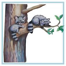 Raccoon Play Danay Design