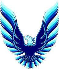 Blue Trans Am Decal Ebay Trans Am Firebird Trans Am Pontiac Firebird