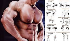 muscle defining sut for