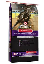 feeding for horse weight gain purina