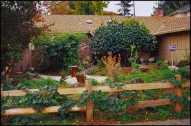 Pin By Rj Chap On Fence Ideas Front Yard Backyard Woodland Garden