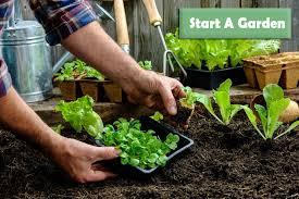 how to start a garden from scratch hrwet