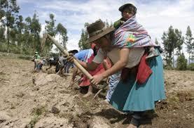 Proponen incidir a favor de políticas agrarias, campesinas e ...