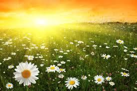 День летнего солнцестояния - факты » Слово и Дело