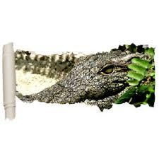 Wall Stickers Alligator Teeth Crocodile Vinyl Bedroom Girls Boys Scroll D094 Ebay