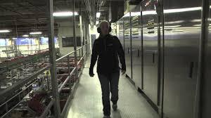 labatt brewery tour video you