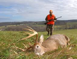 Pa Hunters Barred From Bringing Whole Deer Back From Maryland New York Ohio And West Virginia Due To Cwd Local News Lancasteronline Com