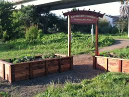 Vegetable Garden Against Fence Apartments