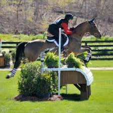 Ava Cox   Eventing Nation - Three-Day Eventing News, Results, Videos, and  Commentary