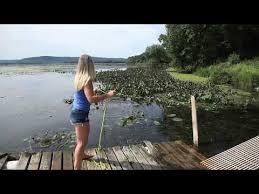 pond weed rake aquatic weedraker
