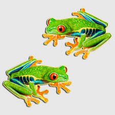 Red Eyed Tree Frog Sticker Amphibian Herpetology Decal