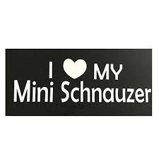 I Love My Mini Schnauzer Decal Lucky 7 Schnauzers