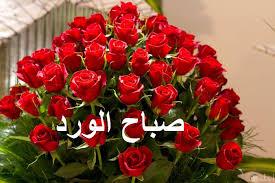 صباح الورد والفل على كل الصحاب والأحباب مسجات جميلة