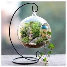 hanging glass terrarium at rs 175 piece