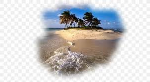 caribbean iphone 6s plus