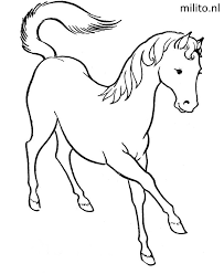Kleurplaat Paard De Mooiste Kleurplaten Milito Nl