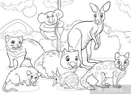Fotobehang Buideldieren Dieren Cartoon Kleurplaat Pixers We
