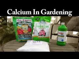 calcium products what is calcium and