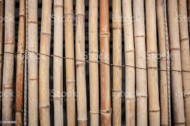Dry Bamboo Wall Tied With Rope Texture Backgroundbamboo Fence Backgroundbamboo Stick Pattern Stock Photo Download Image Now Istock