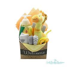 wele baby newborn gift basket