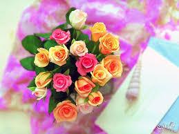 صور ورد ملون 2020 صور ازهار منوعة2020 صور زهور البنفسج صور زهور
