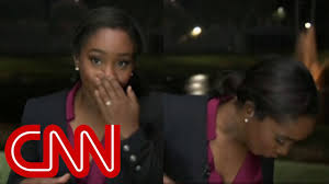 CNN reporter 'attacked' by lizard on live TV - YouTube