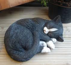 resin black n white cat arts home