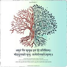shankaracharya sanskrit quotes vedic mantras education quotes