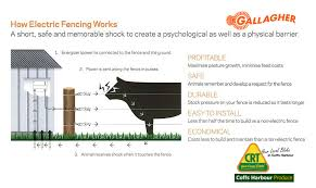 Electric Fencing 1 0 A Simple Guide To How An Electric Fence Works Coffs Harbour Produce