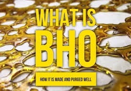 What is BHO? How it is made and purged well