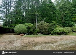 japanese garden trees plants green