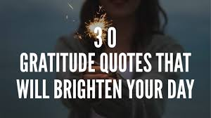 gratitude quotes that will brighten your day