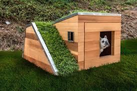 solar powered susnable dog house