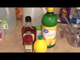 lemonade master cleanse detox how to