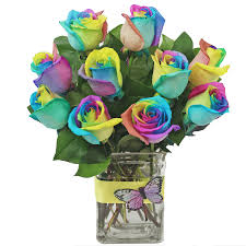 rainbow roses ashland addison